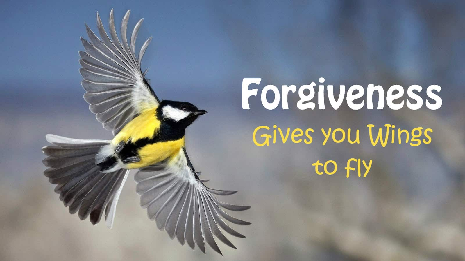 Forgiveness gives wings to fly.