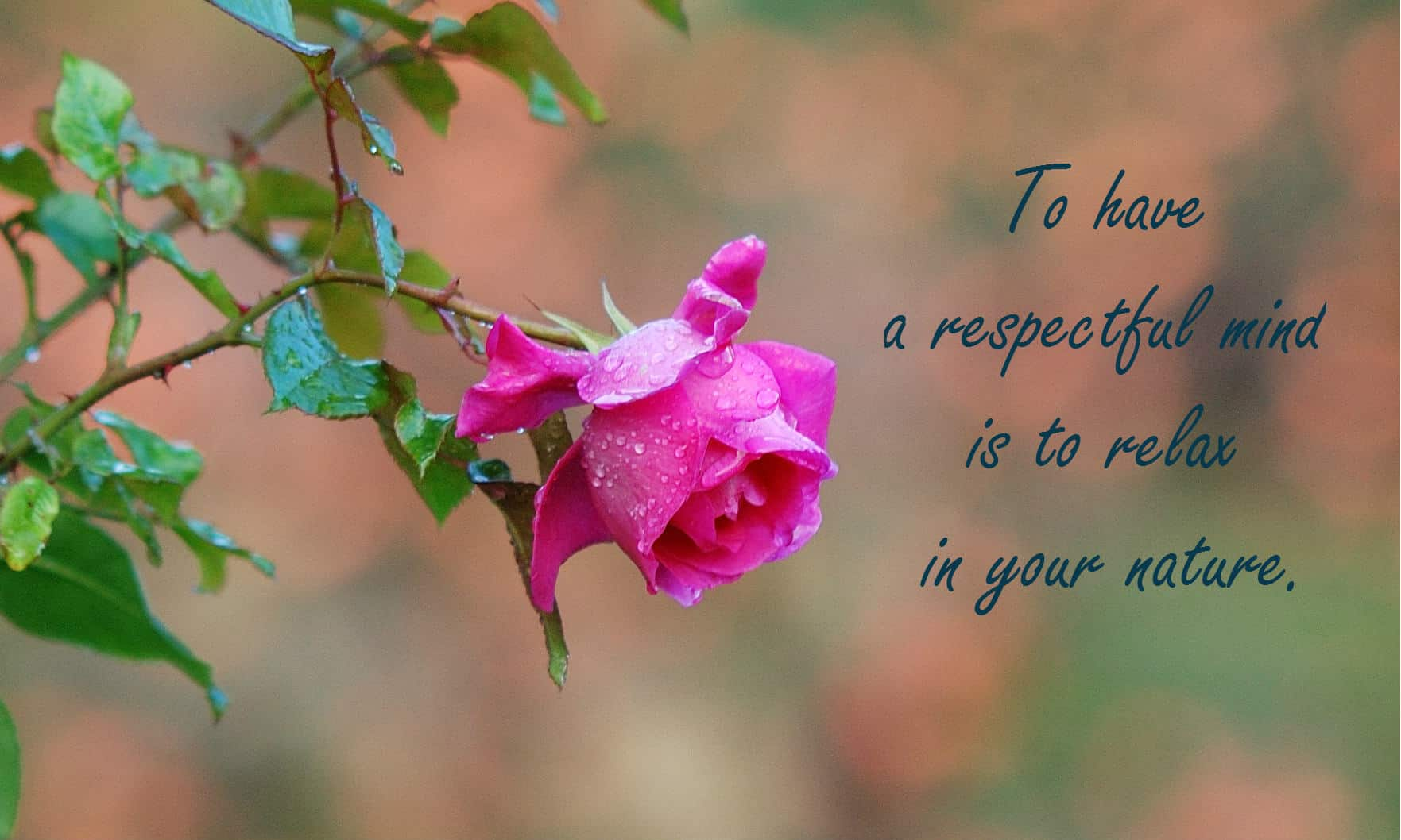 To have a respectful mind is to relax in your nature.